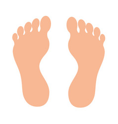 human foot plant icon vector image