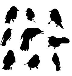 Nine crow silhouette set vector