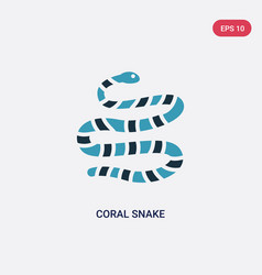 Two color coral snake icon from animals concept vector