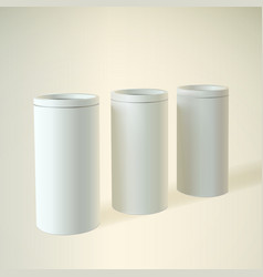 Blank white round tube or box vector image vector image