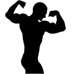 Bodybuilder back double biceps vector