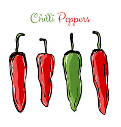 Chilli peppers red and green vector