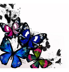 Fashion detailed butterflies in spoty style vector