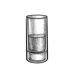 ink sketch whiskey glass vector image