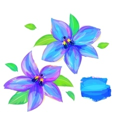 The cute Flower on white background vector image
