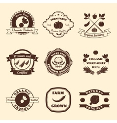 Vegetable Label Set vector image