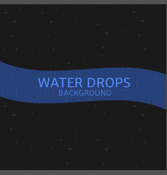 water drops background vector image