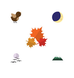 Flat icon natural set of bird peak canadian and vector