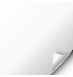 paper poster hangs with a wrapped up corner vector image