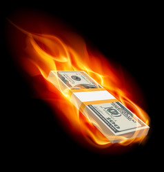 pile of dollars on fire on black vector image vector image