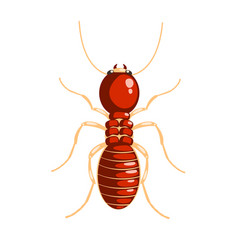 termite insect colorful cartoon character vector image