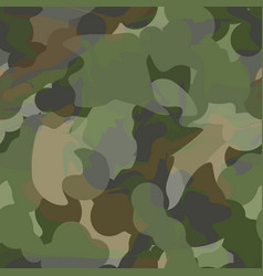 army camouflage pattern vector image
