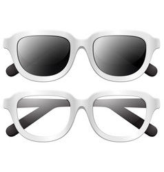 eyeglasses and sunglasses on white background vector image