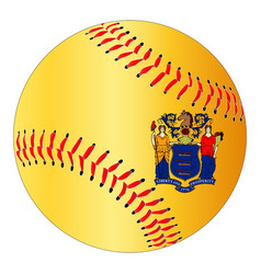 new jersey flag baseball vector image