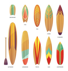set of isolated different types of surfboards vector image