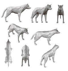set with coyote in different positions polygonal vector image