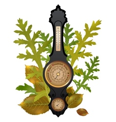 barometer with leaves vector image vector image