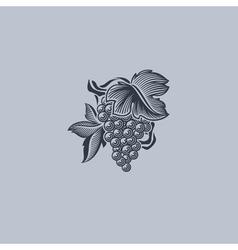 Grape with leaf - Element for design vector image