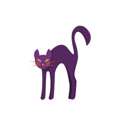 cat icon isolated vector image vector image