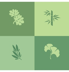 Leaf - Set of design elements vector image vector image