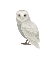 flat icon of snowy owl side view large vector image