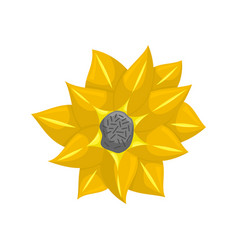 Floral botanical flower yellow ornament vector