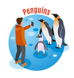 photo with penguins background vector image