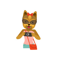 Yorkshire terrier girl character dressed up in vector