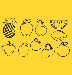 collection of fruit outline icons on yellow vector image