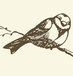 Small titmouse on a branch vector image