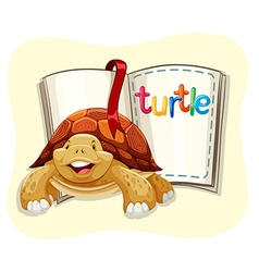 Brown turtle and a book vector