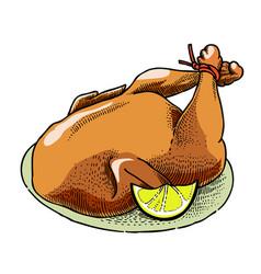Cartoon image of cooked turkey vector