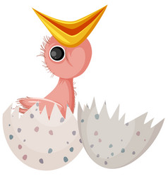 Chick hatching egg isolated vector