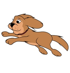 Dog fluffy jumping vector