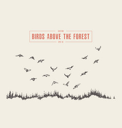 drawn landscape birds flying forest sketch vector image