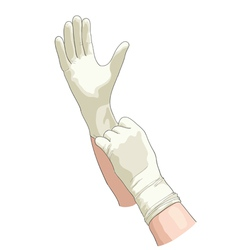 Hands in sterile gloves vector image