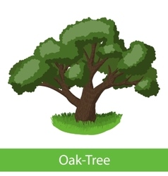 Oak-Tree cartoon icon vector