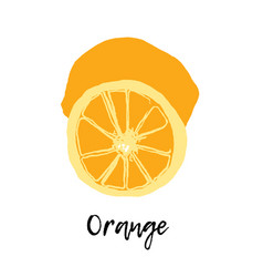 Orange isolated fruit drawing vector