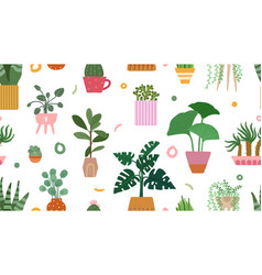 succulent pattern home plants on pots background vector image