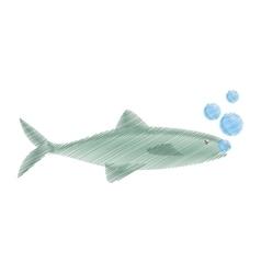 Hand drawing salmon fish sea food fresh bubbles vector