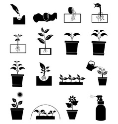 Plant growing icons set vector image