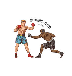 Boxers are training sport strong men fight vector