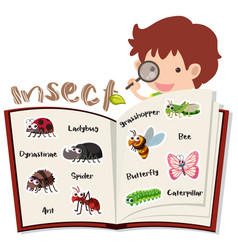 Boy and different insects in the book vector