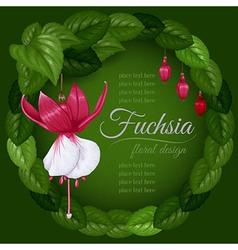 Fuchsia vector