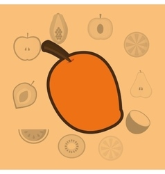 healthy food icons image vector image