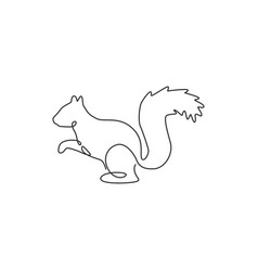 one continuous line drawing cute squirrel vector image