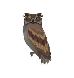 Owl with gray-brown plumage side view wild vector