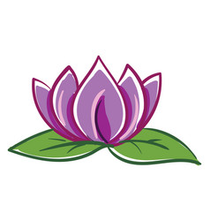 pink and purple lotus with two green leafes on vector image