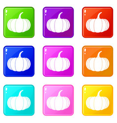 Ripe pumpkin icons 9 set vector
