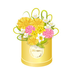 spring delicious flower colorful anemones box vector image